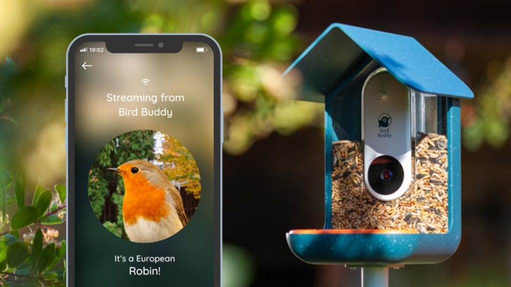 Bird Buddy Kickstarter