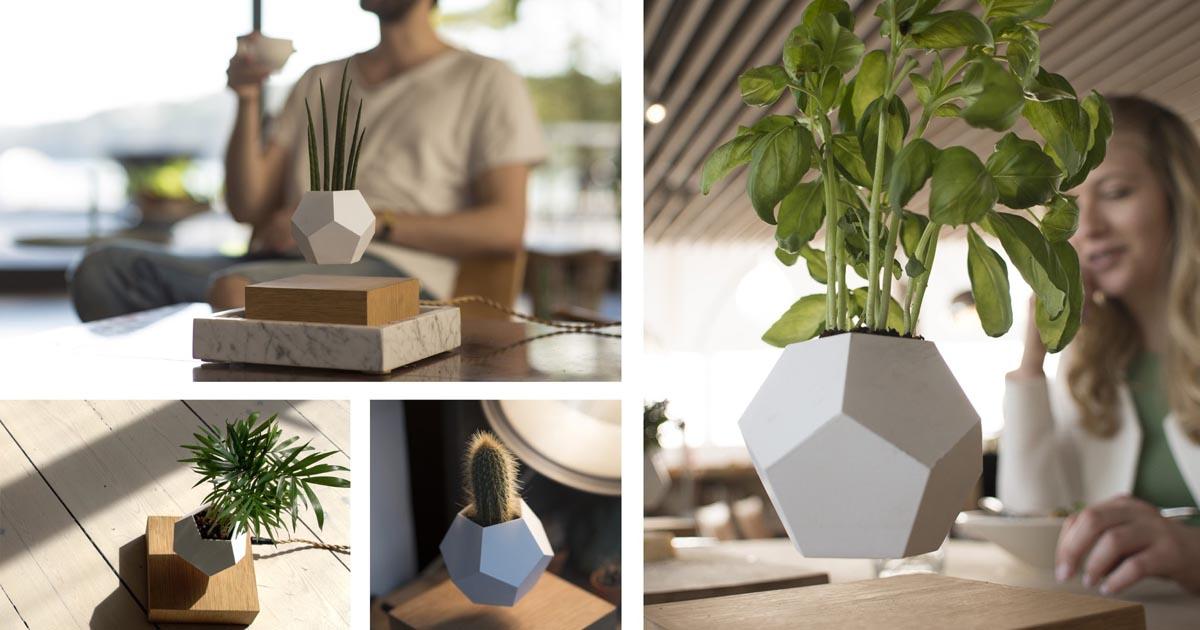Lyfe Planter Collage