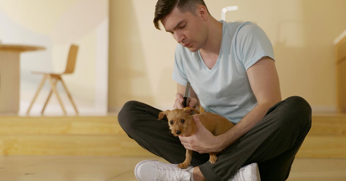 ThermGo Puppy Temp